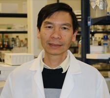 Hiep Tran, PhD