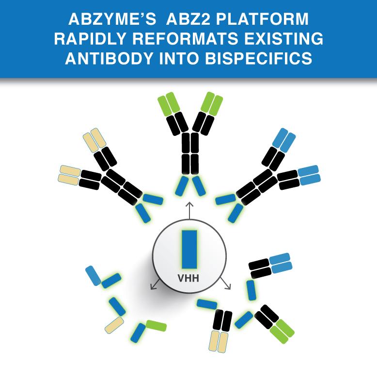 Abz2 Bispecific Platform
